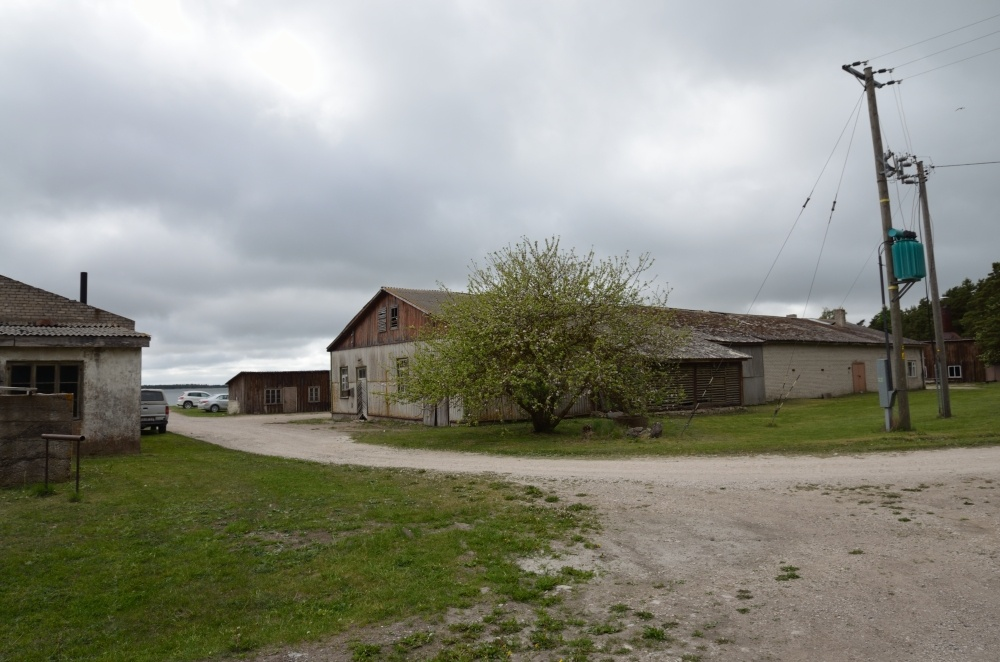 Former fishing industry buildings in Papissaare port