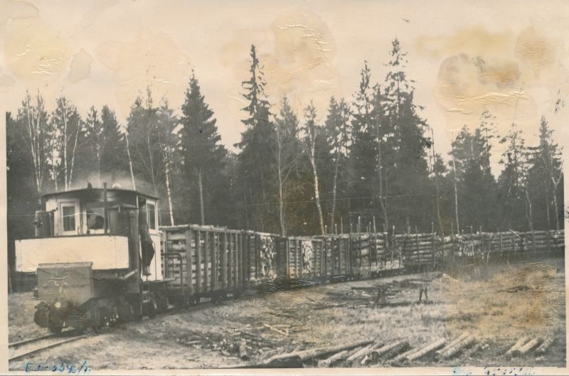 Photo. Timber transportation at Tudu Forest Point in Virumaa.