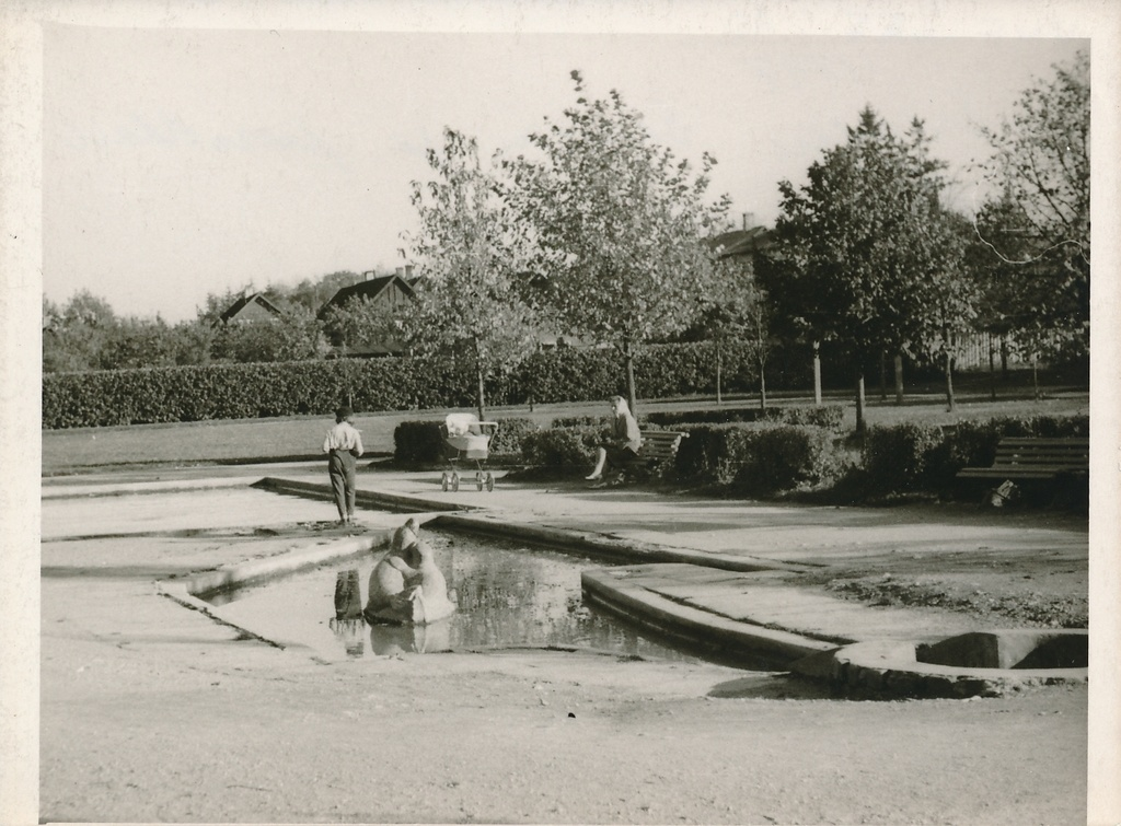 Photo, Viljandi, Pionier Park, swimming pool, seal images, approx. 1970