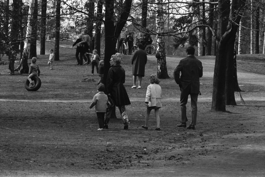 Sibelius Park. Helsinki celebrations. Families at the park event in Sibelius park.