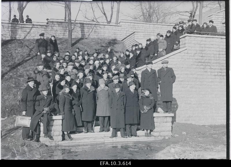 Participants from the tour on the stairs of Hirve Park.