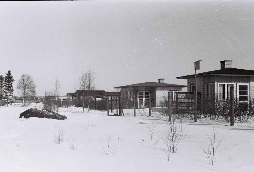 Muuga Garden City, Lupiini tee, beginning of the 1960s