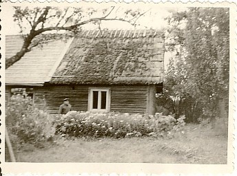 Photo, Kivitiku farm Viisus 1960s.