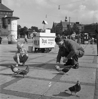 Feading pigeons in Copenhagen 1949  duplicate photo